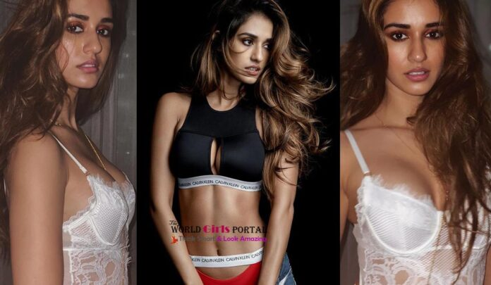 Disha Patani Photos: Beyond the limits of beauty, these pictures are more than one 2020