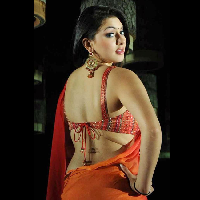 hansika Motwani backside saree blouse picture  Hansika Motwani Biography, Wiki, Profile, Age, Height, Family, BF, Photos, Latest News – Popular South Indian Actress hansika motwani backside saree blouse picture