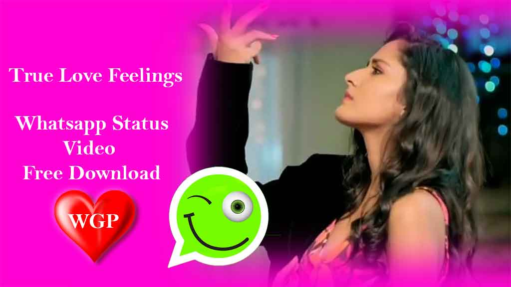 True Love Feelings WhatsApp status💝 video Download😘 cute couple status😍 Punjabi 30Sec by WGP  TikTok Best Love Couple 💛 Relationship Goals Compilation👫 Perfect Two #3 Latest Video True Love Feeling whatsapp staus video punjabi song