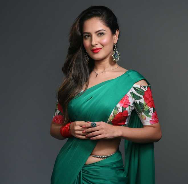 Puja Banerjee Beautiful Picture  Pooja Bose Biography, Wiki, History, age, Height, Weight, Figure Size, Latest Photos, Movie, TV Serial Actress puja banerjee hot indian tv and bollywood actress in bikini and saree