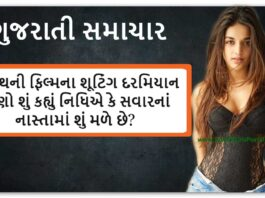 Nidhhi Agerwal Gujarati Samachar - Latest Photos - Upcoming Film - Social Media
