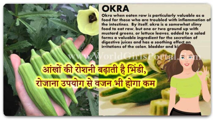 Okra Health and Fitness Benefits: Okra increases the light of the eyes, will also reduce weight - World Girls Health & Fitness Portal