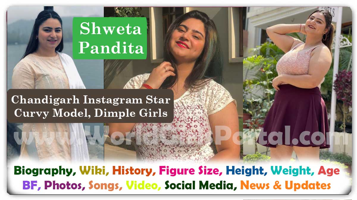 Shweta Pandita Biography Wiki Contact Details for Brand Promotion with Chandigarh Model Dimple Girls - Instagram Influencer - Curvy Model