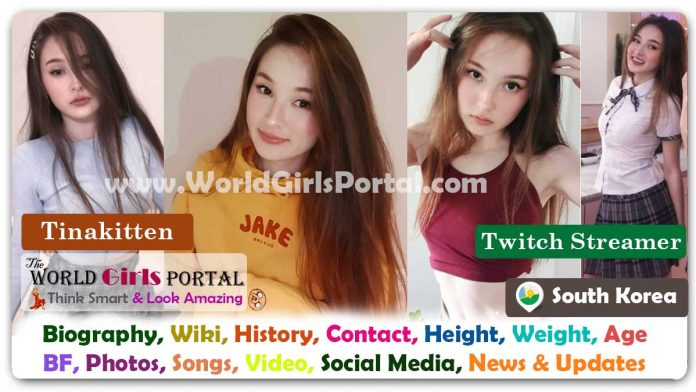 Tinakitten Biography Wiki South Korean Model Contact Details Photos Video BF Career Phone Number Email ID Social Media Location Bio-Data